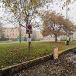 Cremona, provvedimento di contenimento urbano dei colombi