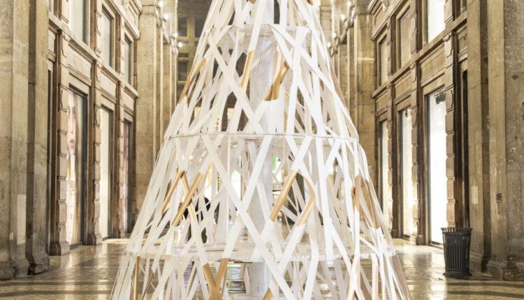 Milano, gli alberi di natale illuminano tutta la Città: ecco gli alberi e dove sono