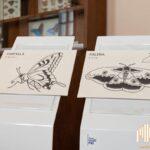 Lecco, Percorso multisensoriale nei musei del Si.M.U.L. Polo di Palazzo Belgiojoso