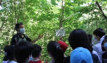Macerata, il bosco urbano di Collevario si arricchisce di un percorso natura realizzato dagli alunni della scuola primaria Dolores Prato